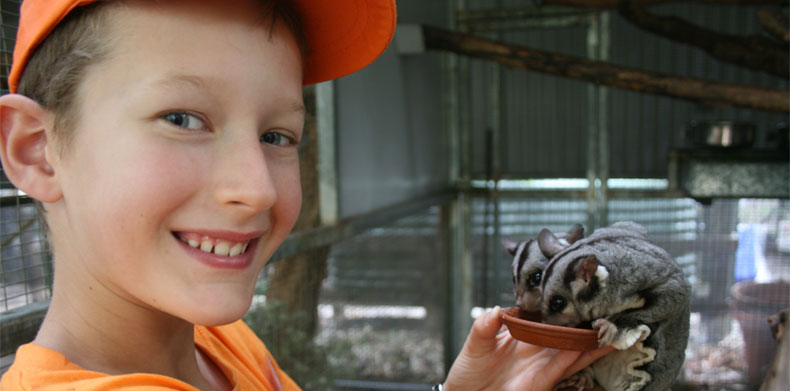Junior-Zookeeper-Reece-eye-to-eye-with-Shiloh-the-Dingo